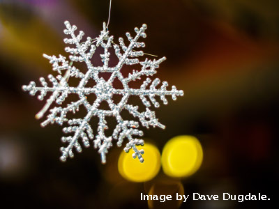 Snow Flake by Dave Dugdale.