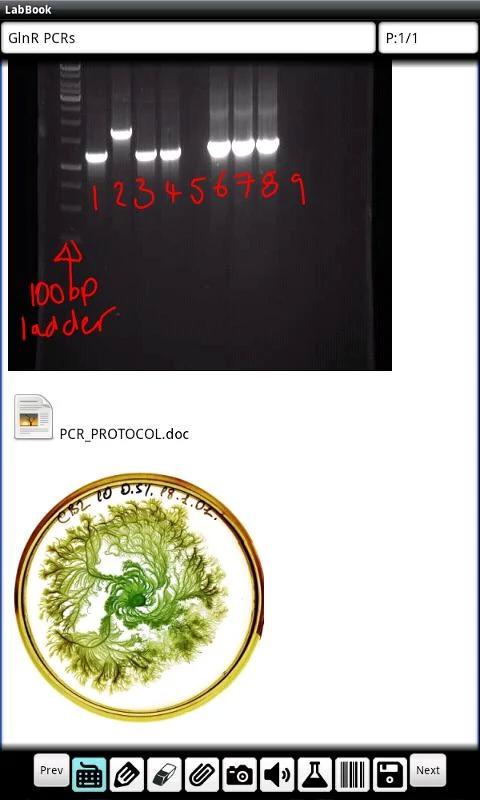 LabBook screen