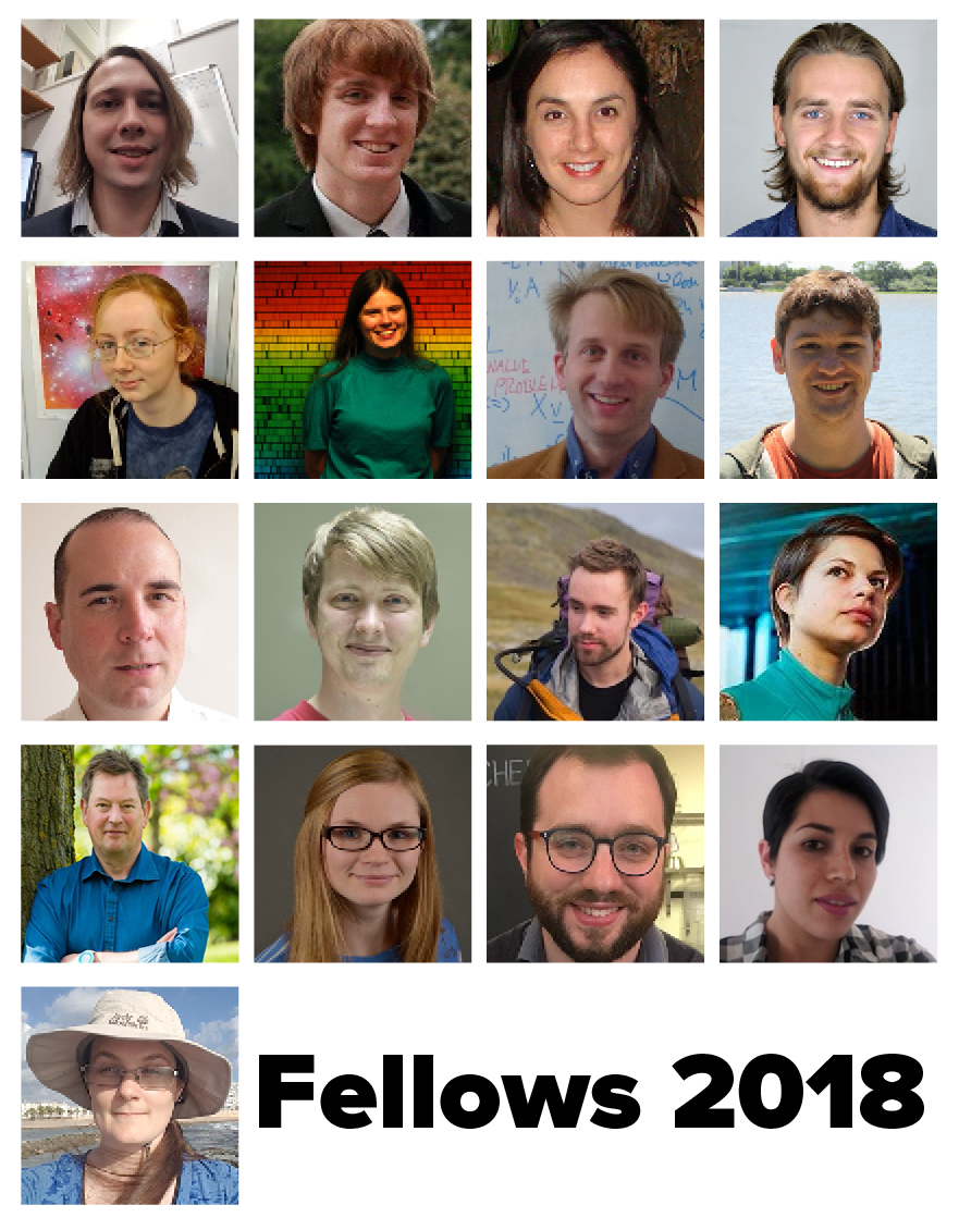 Fellows 2018
