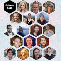 Hex collage of Fellows 2019