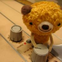 Teddy bear recording