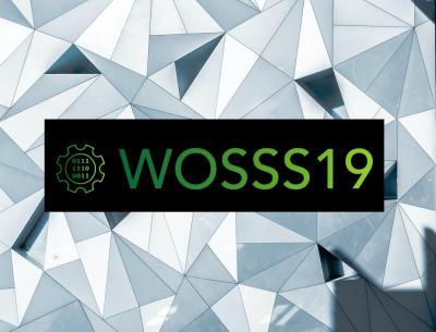 WOSSS19 logo